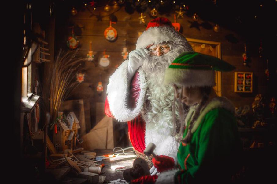 An-elfs-wish