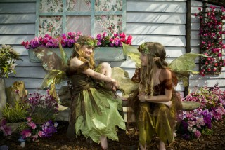 Do You Believe in Fairies? (on hold due to COVID19)